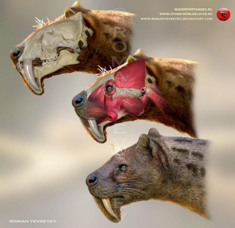 Eusmilus cerebralis head restoration by RomanYevseyev