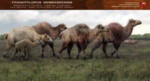 Titanotylopus nebraskensis by RomanYevseyev