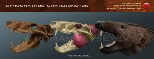 Cynognathus crateronotus head restoration by RomanYevseyev