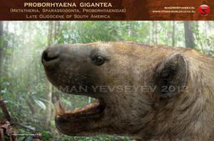 Proborhyaena gigantea head restoration by RomanYevseyev