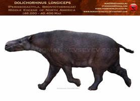 Dolichorhinus by RomanYevseyev