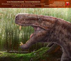 Viatkogorgon ivakhnenkoi head by RomanYevseyev