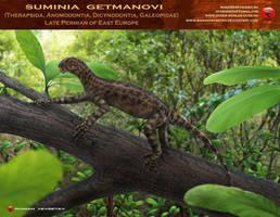 Suminia getmanovi by RomanYevseyev