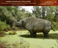 Embolotherium ergilense by RomanYevseyev