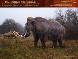 Mammuthus primigenius by RomanYevseyev