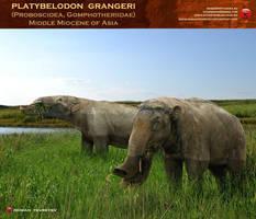 Platybelodon grangeri by RomanYevseyev