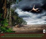 Rain Forest by uki--uki