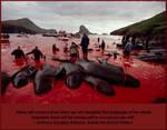 Whales under threat of extinction by uki--uki
