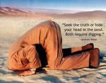 Seek the Truth by uki--uki
