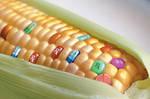 Biotechnology Madness by uki--uki