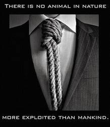 Most exploited by uki--uki