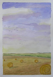 Field with hayballs by gardoll