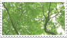 tree stamp 2 by taishokun