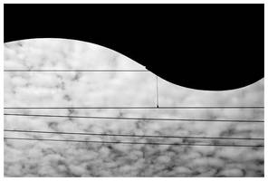 Abstraction of a violin by Kira87