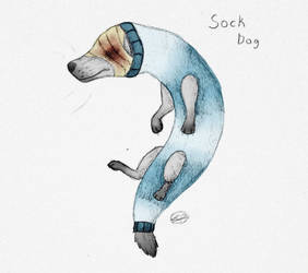 Sock Dog [Colored] by theworstkindofcheese