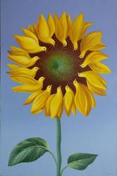 Flower Power by Mihai82000