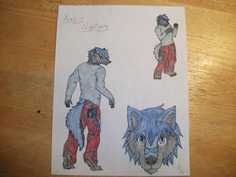 Xavier Sketches (now with colour!)*fanfare noises* by X-CityWolf-X