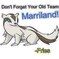 Never Forget Us. -Fries To Marriland by PokeXYman