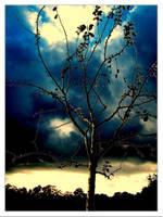 clouds by Schneeengel