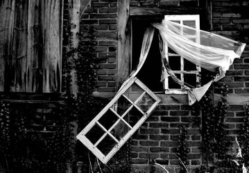 Fallen house by Schneeengel