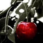 Red cherry by Schneeengel