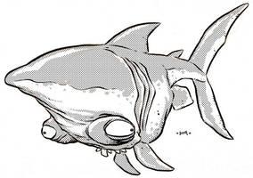 Runt Shark by Kennon9