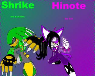Shrike and Hinote by DJ-Shrike