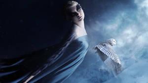 Arryn by MachiavelliCro