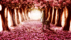 Path by MachiavelliCro