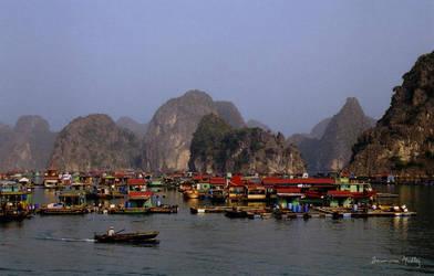 The Floating Market by Majnouna