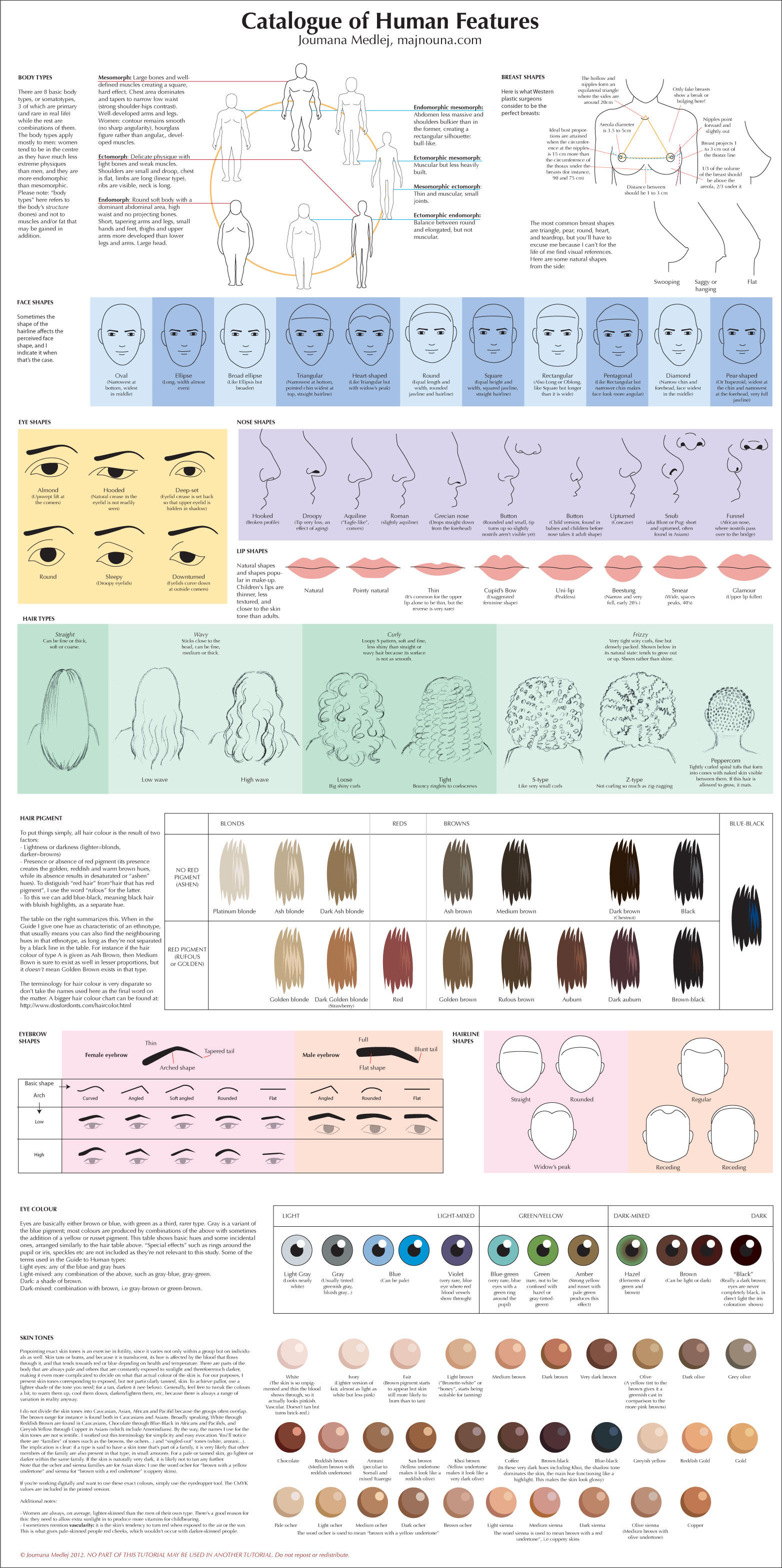 Catalogue of Human Features by Majnouna