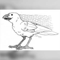 #DrawingADay: 012 by RipfangDragon