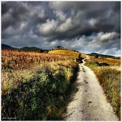 The magic path... by Michel-Lag-Chavarria