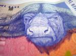 Animal Money by Oritaku