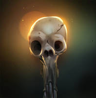 Skull by Gimaldinov