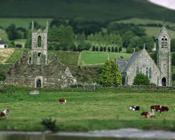 Baltinglass Abbey, Co. Wicklow - Tiltshift by Sabhantas