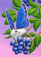 Blueberry Bop by TabLynn