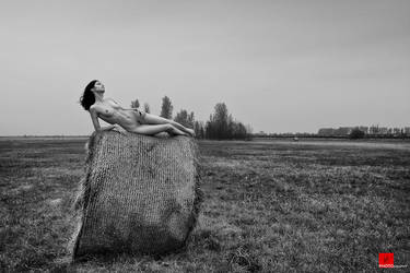 Autumn has come BW by Aisii