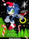 Sonic the Hedgehog by rubbe