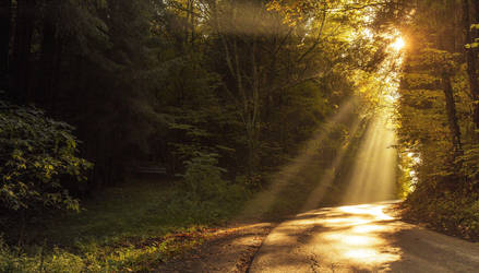 rays of the sun 4 by Mark-Heather