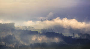foggy by Mark-Heather