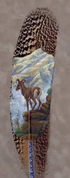 Desert Bighorn painted feather by Denali