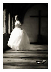 Cinderella by Osnafotos