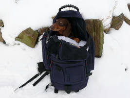 My Backpacking Buddy by Tasky
