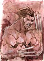 Wolverine by MichelaDaSacco