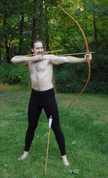 Daven the Archer 22 by LinzStock