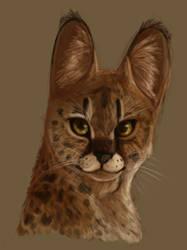 Serval by teensybird