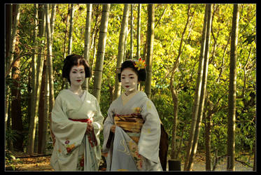 Among the Bamboo :: Toshihana and Toshiteru by DrowElfMorwen