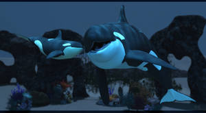 Interaction :: Orca by DrowElfMorwen