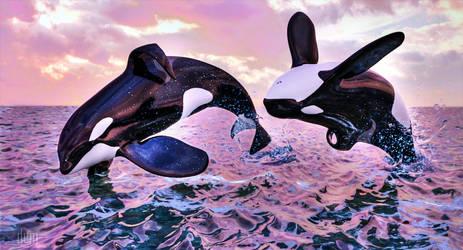Tilikum and Keiko by DrowElfMorwen